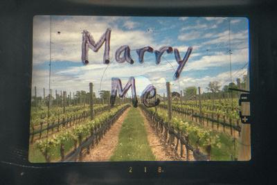 My Unique Proposal Through a Lens