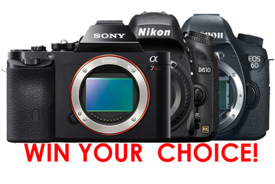 Win Your Choice of a Nikon D610, Canon 6D or Sony A7!