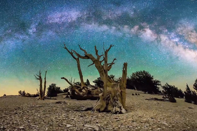 Michael Shainblum: The Art Behind The Time Lapse