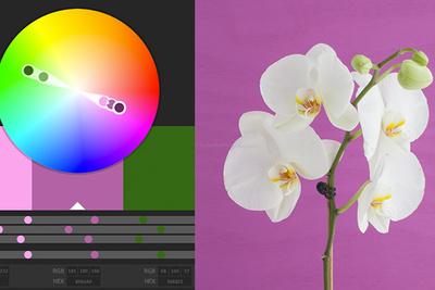 Gaining Inspiration Through Using A Color Wheel