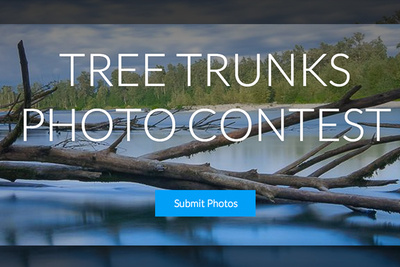 Weekly Contest: Win a Woodsnap Photo Collage Worth $1000