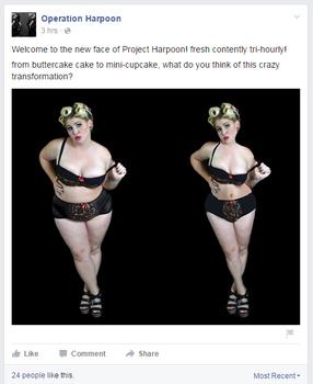 operation-harpoon-fat-shaming