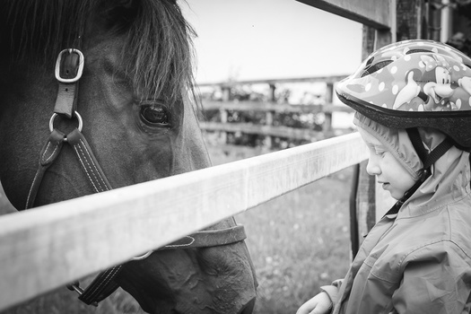 black and white photograph of a child and a horse.. photo of little girl and pony. monochrome image of young child and thoroughbred horse.