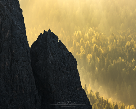Mountains and golden sunlit woods, shot with a long tele lens in the Dolomites by Daniel Laan.