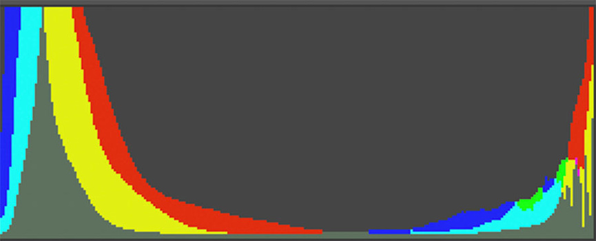 Histogram of the raw file