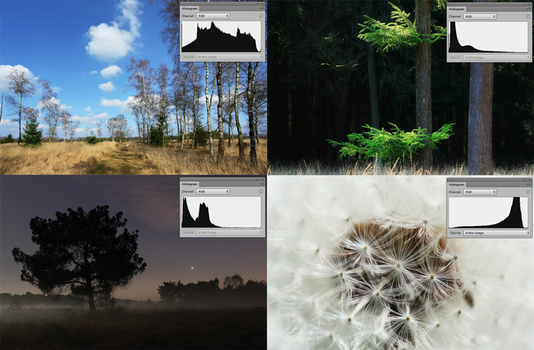 Just a few examples on how the histogram can be, depending on the subject and exposure.It shows the histogram can have completely different shapes, even if the exposure is correct.
