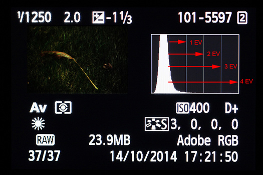 An underexposed image for illustration purposes. The lines in the histogram stands for the amount of stops. It is possible to determine how much stops the exposure needs to be corrected.