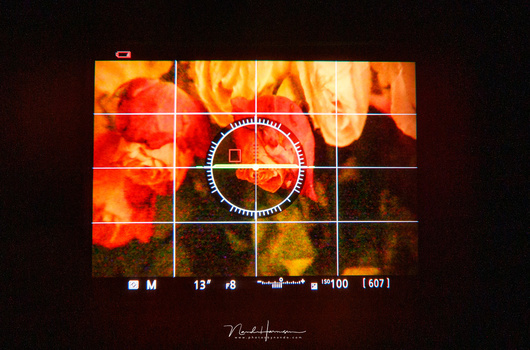 With exposure simulation we see what the effect of shutterspeed, aperture and ISO has on the image. If the image is underexposed, the EVF will become proportionally darker. This does not happen in an optical viewfinder. The image shows the EVF of a Nikon