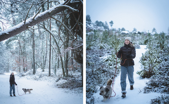 Snowy conditions, aperture priority, exposure compensation