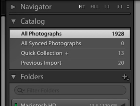 a screenshot of the Catalog module in Lightroom CC