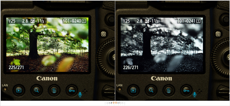 This example shows the difference between shooting in color, and shooting in black and white. It offers a completely different way of judging the picture. If you shoot in raw, the color information will be available in post processing.