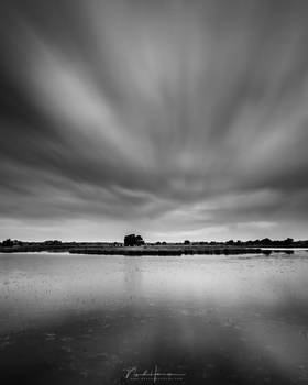 If the photo did not turn out so good, changing it into a monochrome image will not make it better. I am convinced black and white photography is totally different from color photography. Colors can distract and prevent one from thinking in contrasts. (EO