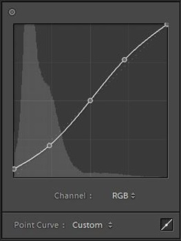 Tone curve with black point raised and with an 'S' shape for contrast