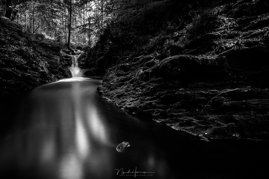 When the photo is temporary converted to black and white, it becomes clear how much attention the bright spots in the water attracts. Removing color can help to see these things.