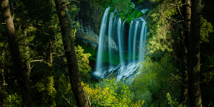 The color of this 27 meter waterfall stands out from its surroundings. It is nearly impossible to see the different in brightness from the tree leaves. For that you need to convert the color photo into black and white.