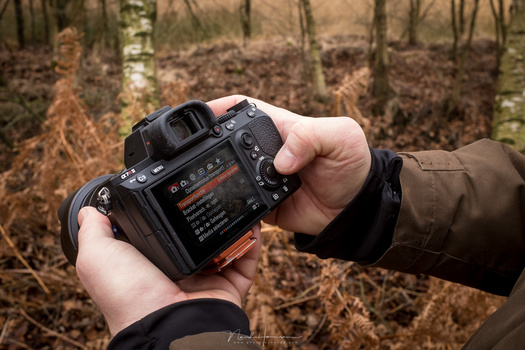 Customization makes a camera very personal and easy to use. You don't have to dive into the menu anymore. But if you never have to look into the menu, you won't get familiar with the menu of your camera. Searching for an option can be very frustrating aga