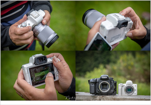 A small APS-C sensor allows cameras to be very small and easy to take with you. Also lenses can be more compact. This one is a consumer camera, and is more compact than its larger brother with the same sensor, as seen in the image bottom right.