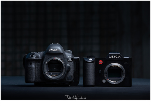 Full frame sensors are considered the standard. Cameras containing these sensors are often called professional cameras.
