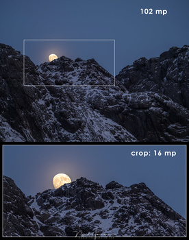 The 102mp sensor allows to crop a lot. I took this image with the Fujifilm GFX100 camera at Lofoten. The crop is similar to a focal length of 1200mm (full frame equivalent). It means you should use a shutter speed of at least 1/1200 sec when you shoot han