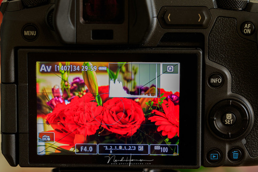 This is an example of a picture style on the Canon EOS R with high contrast and a lot of saturation. Look at the histogram, it is build upon the embedded JPEG that comes with the RAW file format.