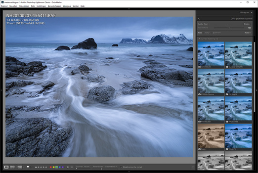 When photographing in RAW file format, picture styles or film simulations can be set in Ligthroom. These are a couple of the options for the Fujifilm GFX 100 RAW files.