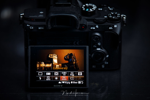 Film simulations, picture styles, or creative styles on Sony cameras. Every brand has its own name for these predefined styles.