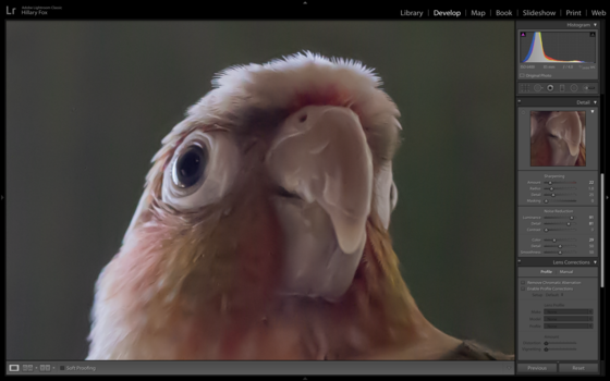 Adobe Lightroom Interface