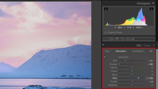 HSL/Color panel screenshot