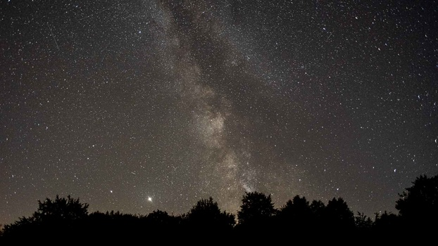 Milky way above forest scene