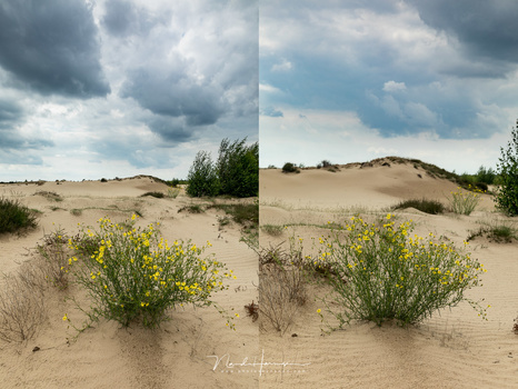 The foreground is about the same size, but I used 24mm for the left image, and 70mm for the right image. Look at the difference in the background.