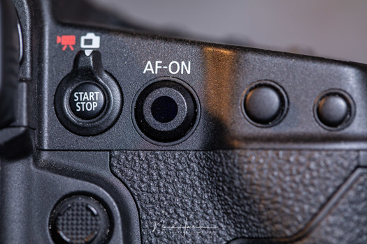 This is the thing I found amazing about the camera: the Smart Controller. Every Canon camera should have one.