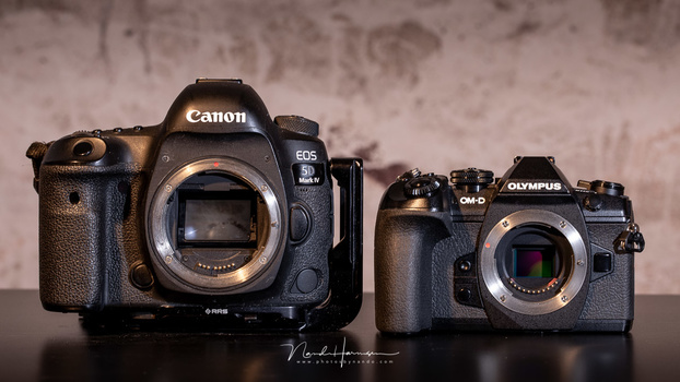 The Olympus OM-D E-M1 II compared to the Canon EOS 5D mark IV.