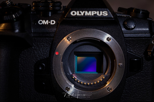 The Olympus has a M43 sensor. Yes, it is small