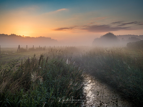 A misty sunrise. Just use filters or bracketing for the exposure and you don't have to worry that much about dynamic range. Nevertheless, this is a single shot, without filters.(M.zuiko 25mm, ISO200, f/8, 1/60)