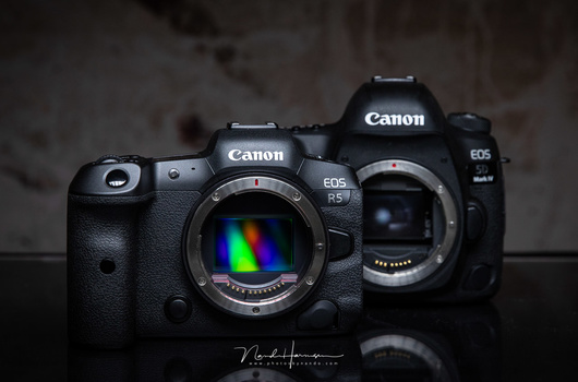 The Canon EOS R5 in front of the Canon 5D mark IV, two amazing cameras