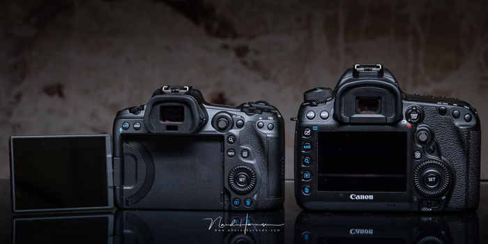 The back side of the Canon EOS R5 and Canon EOS 5D mark IV
