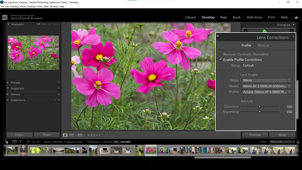 Enable Profile Corrections screenshot in Lightroom