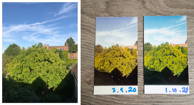 Polaroid Hi-Print after one month of sunshine