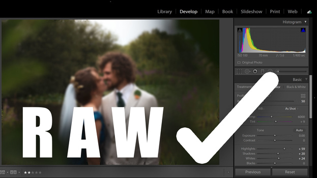 Shoot in raw file format