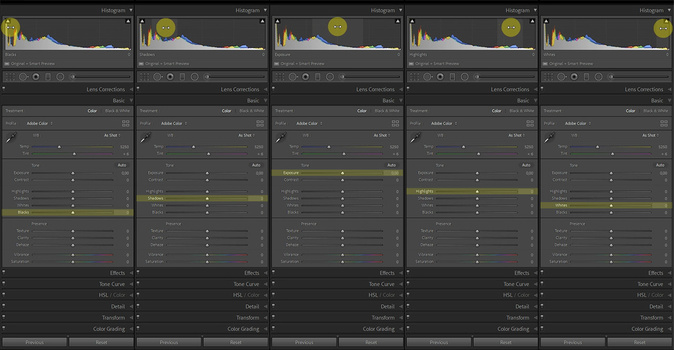Each slider will adjust a different part of the histogram. Lightroom Classic allows you to adjust a slider, or to drag the histogram itself with your cursor.