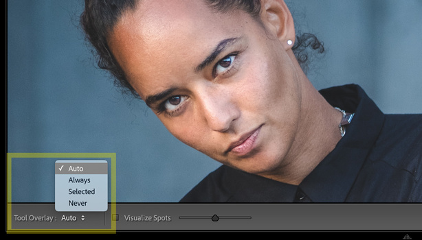 Lightroom Spot Removal tool - change overlay