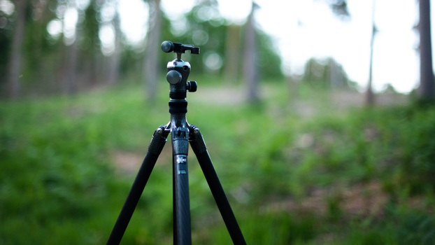 Tripod set up in forest
