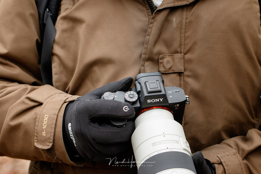 Switch over to Sony mirrorless? Or stay with the Canon DSLR. I wondered often which path to choose.