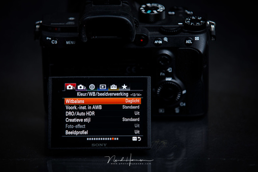 Sony knew its menu wasn't that good, but it took them years before they listened to the complaints. Now in 2020 they released the first camera with an improved menu.