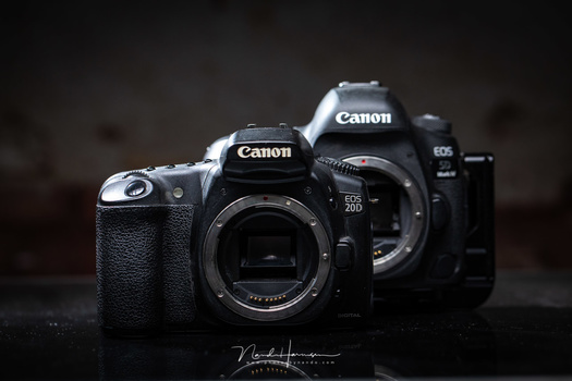 I didn't chose Canon. The camera chose me. It felt as if the camera was designed for my hands.