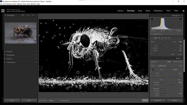 Visualize spots feature in lightroom
