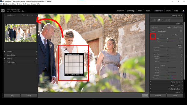 White balance selector tool in lightroom
