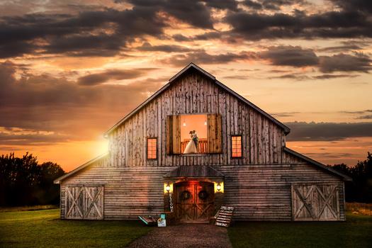 Barn Beauty