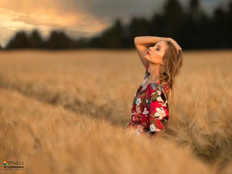 Golden Sunset by Mladen Dakic
