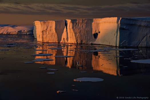 Antarctic Iceberg at Sunset